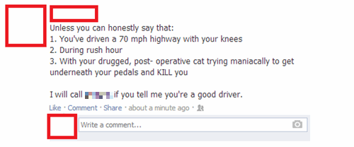 pets,cars,driving,dangerous,failbook