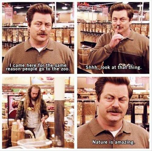 parks and recreation,ron swanson,hippies