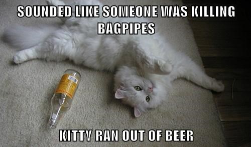 SOUNDED LIKE SOMEONE WAS KILLING BAGPIPES KITTY RAN OUT OF BEER