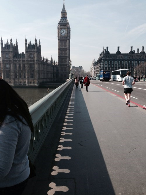 buckingham palace,London,bridges