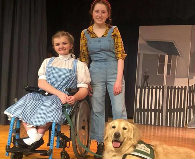 wizard of oz Dorothy service dog toto - 8105221