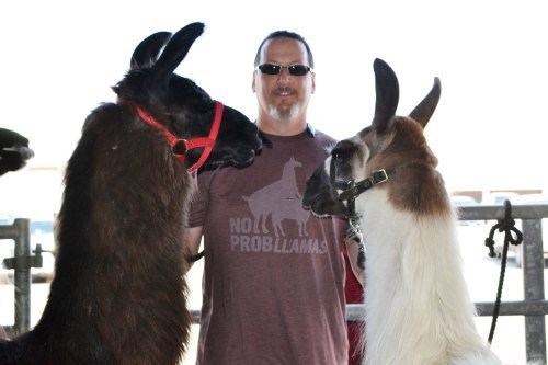 llama,poorly dressed,t shirts