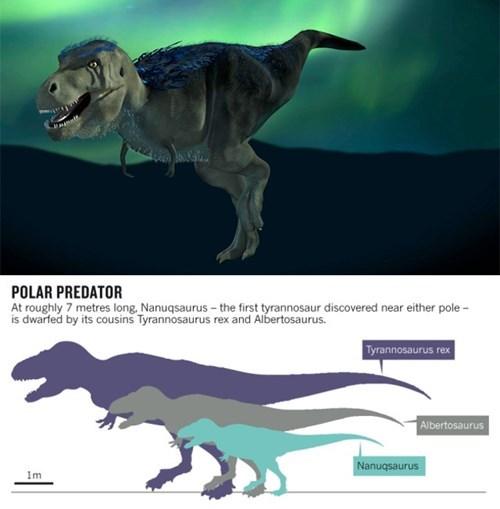 tyrannosaurus rex science funny dinosaurs - 8105430528