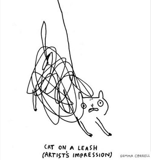 art Cats funny - 8105437952