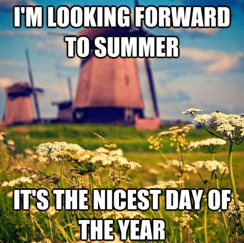 summer,weather,seasons