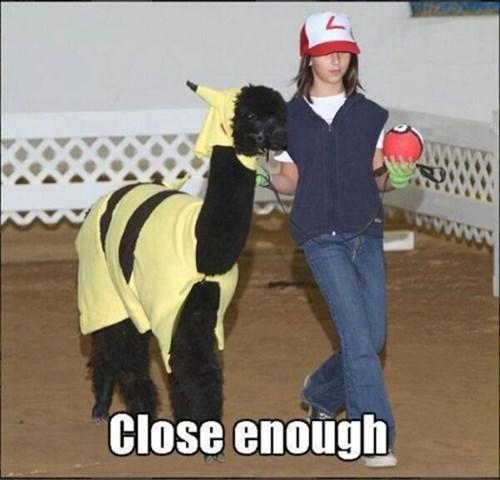 alpaca Close Enough Nailed It pokemon x/y - 8106407424