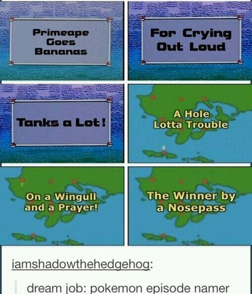 Pokémon anime puns wordplay