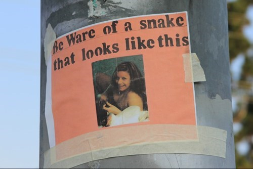 wtf,jerks,funny,snake,flyer