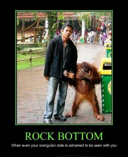 date embarrassing orangutan apes - 8106482688
