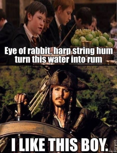 Harry Potter,Pirates of the Caribbean