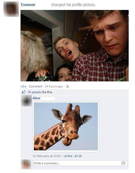 You're having a giraffe