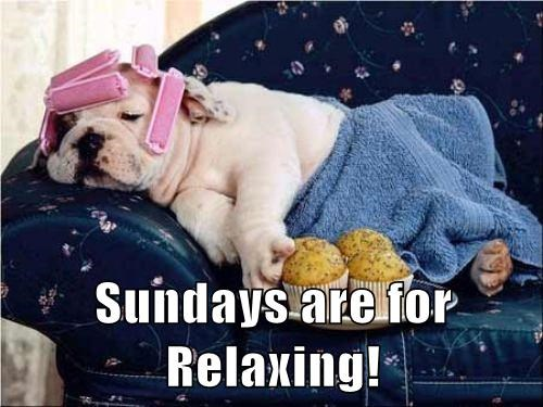 cute sunday noms relax - 8107491840