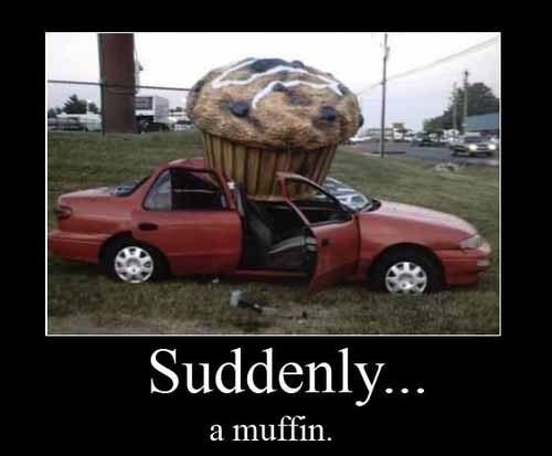 wtf,muffins,huge,funny