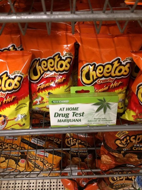 drug testing marijuana cheetos - 8109650688