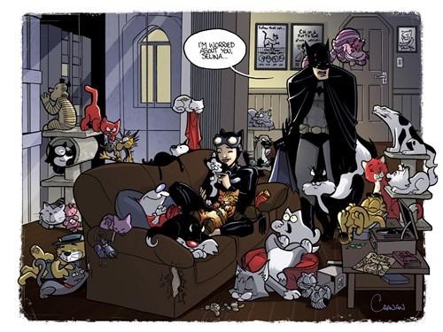 catwoman,batman,web comics