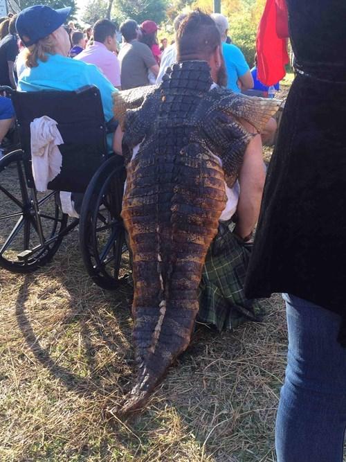 cape alligator poorly dressed - 8110119680