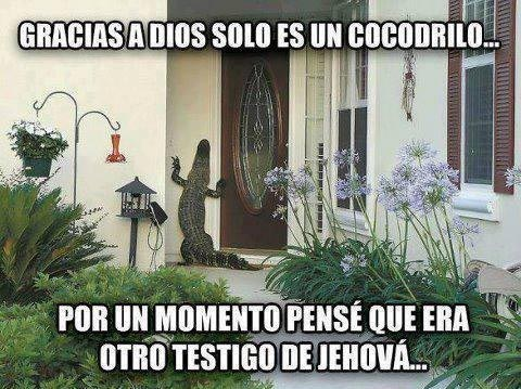bromas Memes curiosidades - 8110206464