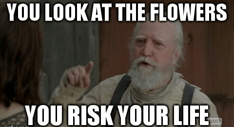 you risk your life lizzie is crazy hershel greene - 8110234880