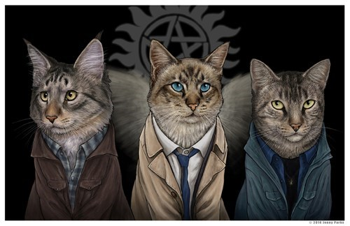 Fan Art,Supernatural,Cats