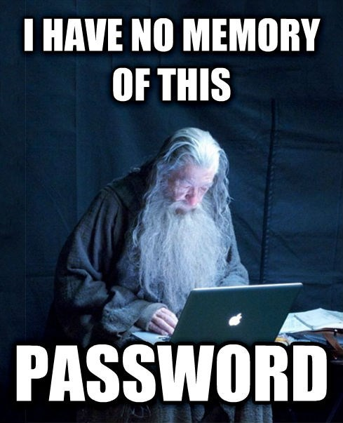 Photo caption - I HAVE NO MEMORY OF THIS PASSWORD