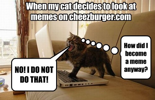 Cheezburger Image 8110442752