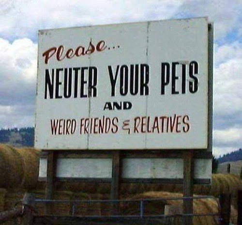 dogs signs neutered Cats funny - 8110469376