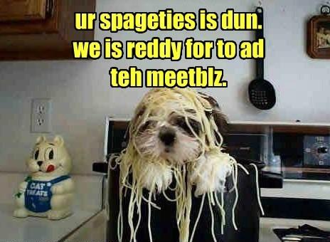 dogs,meatballs,spaghetti