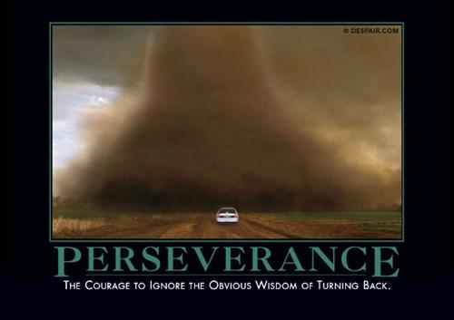bad idea Perseverance idiots funny - 8110535168