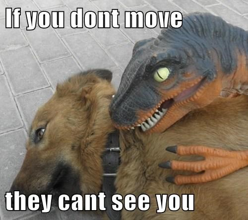 dogs movies jurassic park dinosaurs - 8110777088
