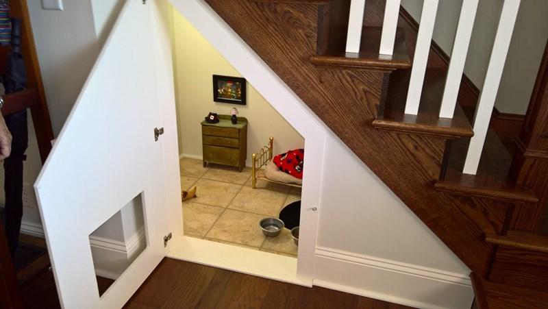 aww cool house cute tiny house chihuahua - 8110853