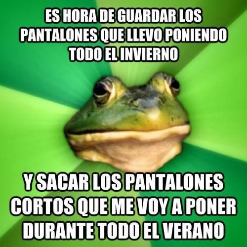 bromas Memes - 8111450880