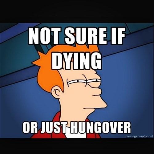 hangover fry funny - 8111514624