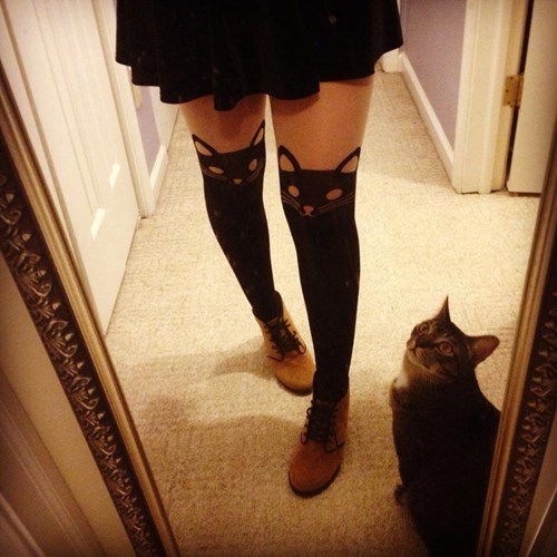 tights poorly dressed Cats g rated