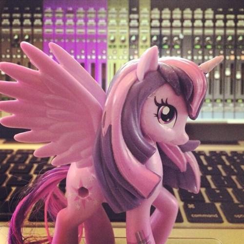cutie mark toys twilight sparkle princess twilight - 8111674112