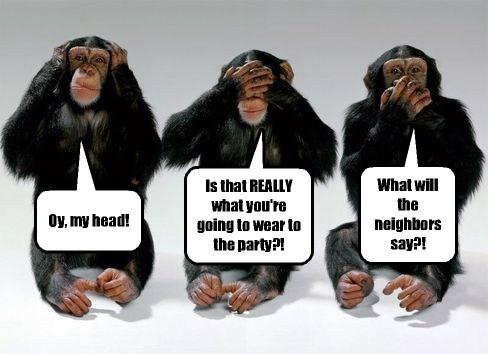 monkeys funny - 8111826688