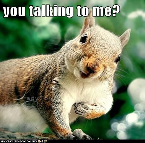 deniro squirrels nuts funny - 8112715776