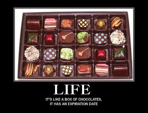 life,chocolate,funny,expiration date