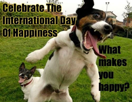 international day of happiness dogs pharrell williams happy un smile happyday - 8113250048
