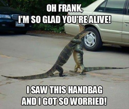 worries,lizard,handbag