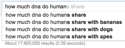 dogs,bananas,humans,funny