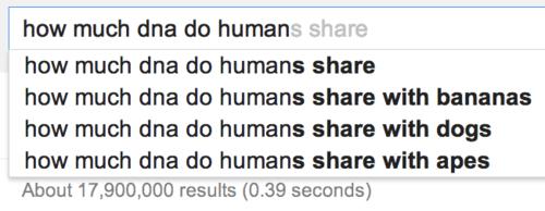 dogs bananas humans funny - 8114683392
