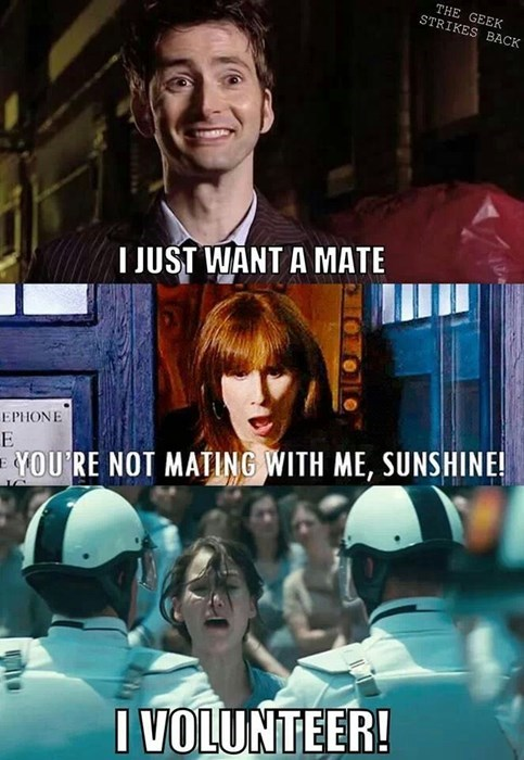 10th doctor,donna noble,hunger games,volunteer