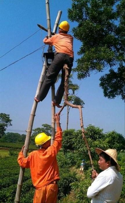 monday thru friday work power lines repair - 8114844160
