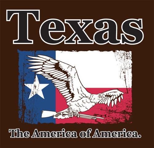 america funny texas - 8114883072
