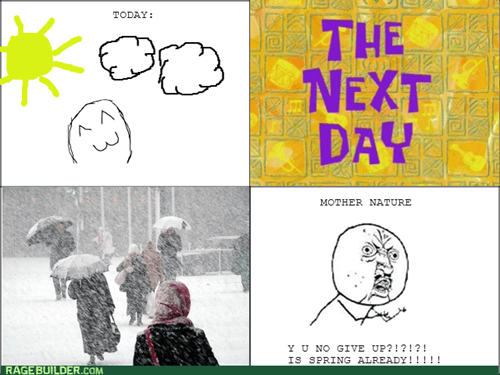 Y U NO spring weather - 8115902464