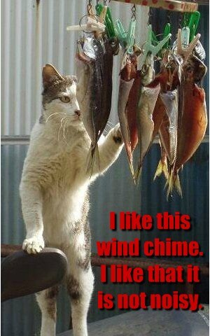 Cats,fish,tempting