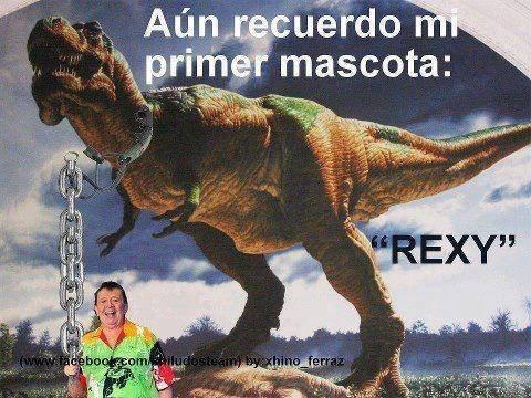 Memes fotos bromas farandula - 8116272896