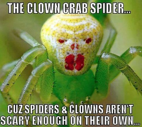 clowns,double whammy,frightening,spiders