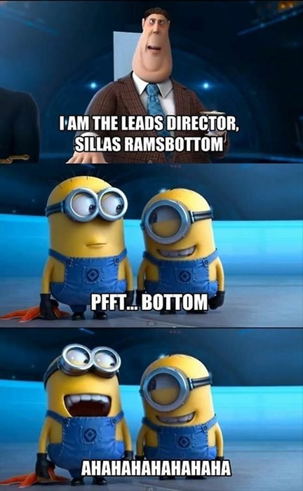 despicable me cartoons that sounds naughty - 8117813760