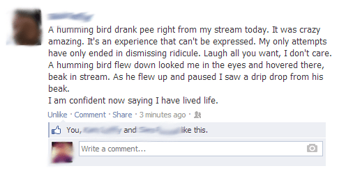 birds,gross,pee